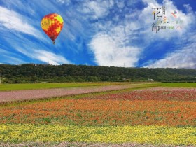 雙色花海搶先看!2020桃園花彩節繽紛綻放,免費熱氣球體驗同步登場!
