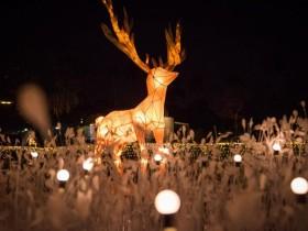 飄雪極光聖誕村登場!2020屏東聖誕節準備點燈啦!