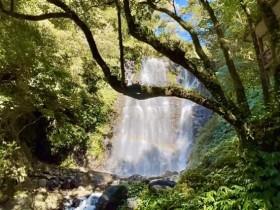 絕美仙氣!三峽【滿月圓國家森林遊樂區】,出發處女瀑布、滿月圓瀑布群!