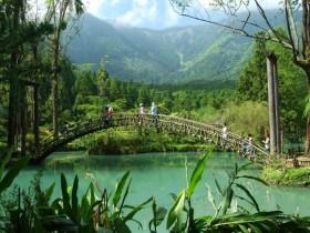 南投不可錯過的森林浴景點!溪頭森林遊樂區午後入園半票優惠四月開跑!