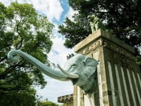 新竹市立動物園歡慶200萬人次,2021年3月27、28日抽一年免費入園、身份證「200」現場免費!