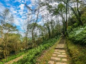 十二座國家森林遊樂區行動支付開跑!2021年4月開始期間限定優惠!