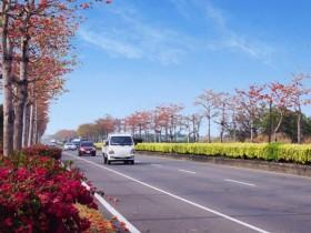 端午節90條公路客運享平日、85折優惠,搭台灣好行套票再享「四人同行一人免費」!