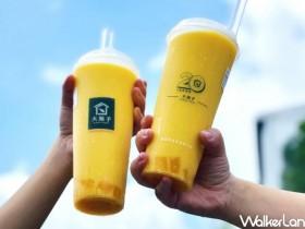 大苑子APP限定連續5天「買一送一」!柚美粒、愛文芒果冰沙、許慶良鮮乳和朋友一起開喝!