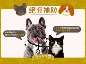 2021全台犬貓免費絕育、寵物登記、狂犬病預防注射補助一次看!