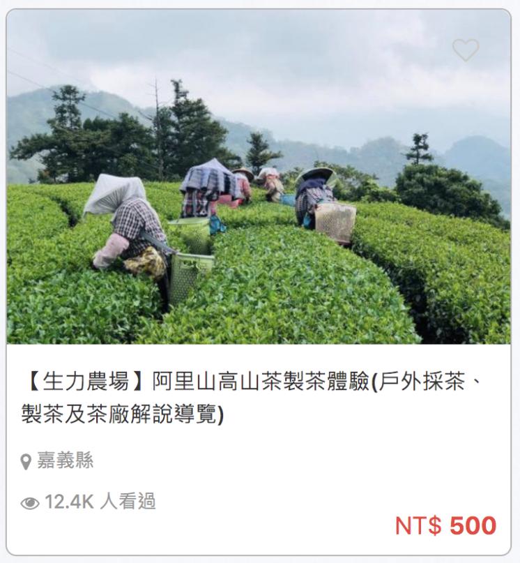 阿里山高山製茶廠體驗