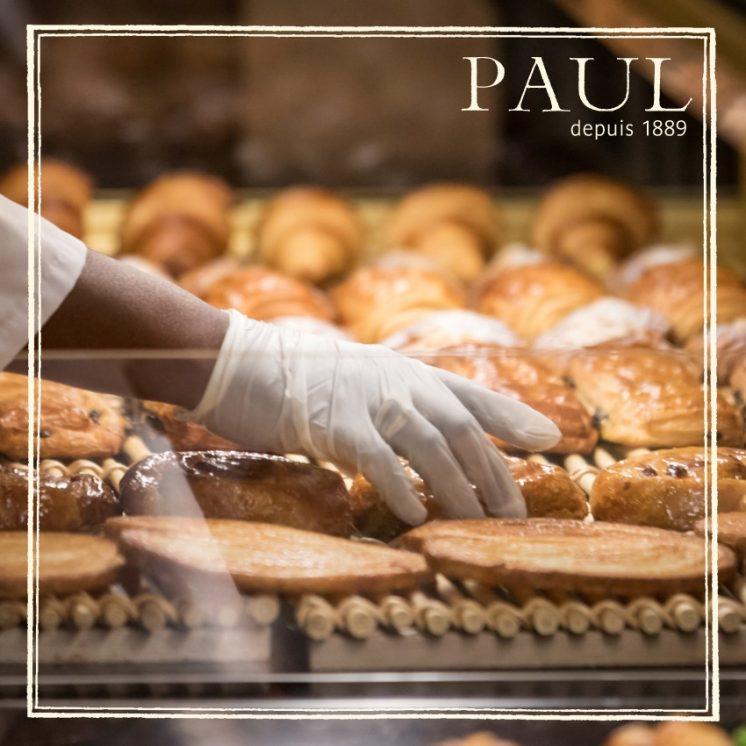PAUL-3-1