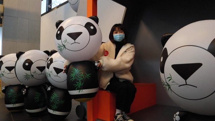 台北市動物園圓寶