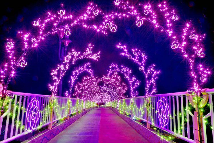 石岡情人木橋