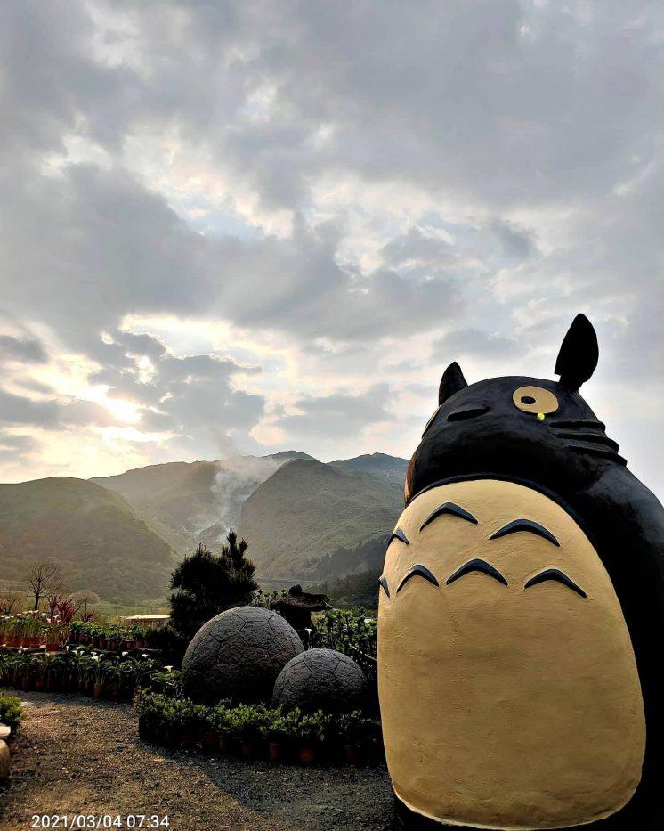 陽明山大賞園繡球海芋園