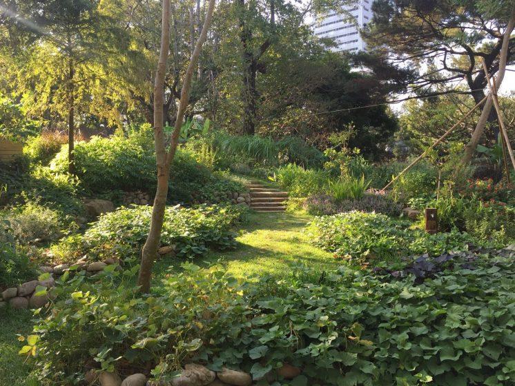 新竹動物園食物森林