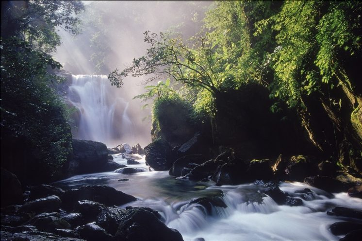 內洞國家森林遊樂區