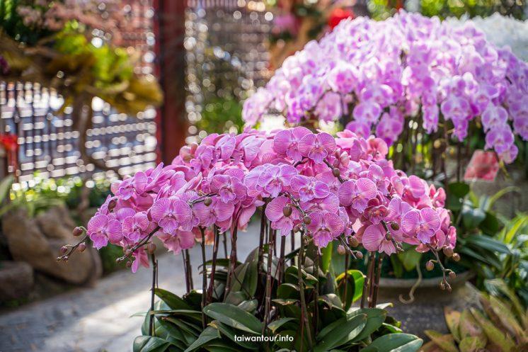 士林官邸春節花卉展