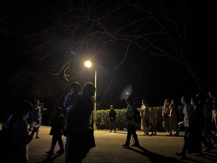 東勢林場夜間導覽