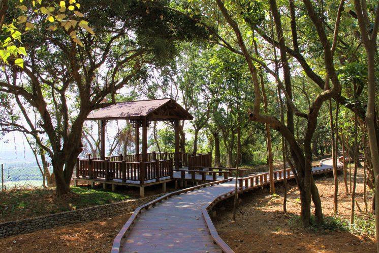 新威森林公園_木棧道及涼亭