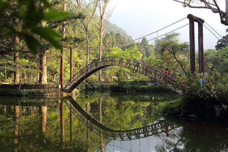溪頭森林遊樂區_大學池