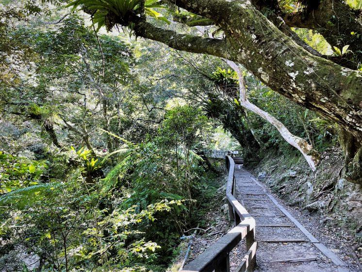 滿月圓國家森林遊樂區步道