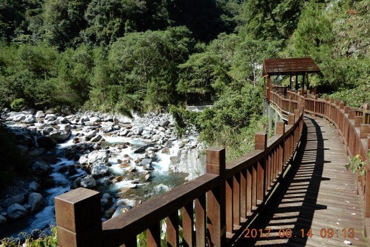 八仙山國家森林遊樂區_天籟步道