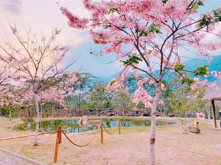 寶來花賞溫泉公園