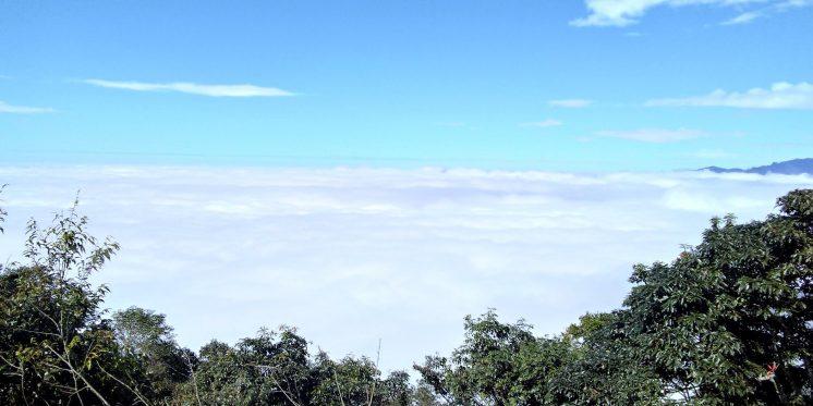 藤枝國家森林遊樂區雲海