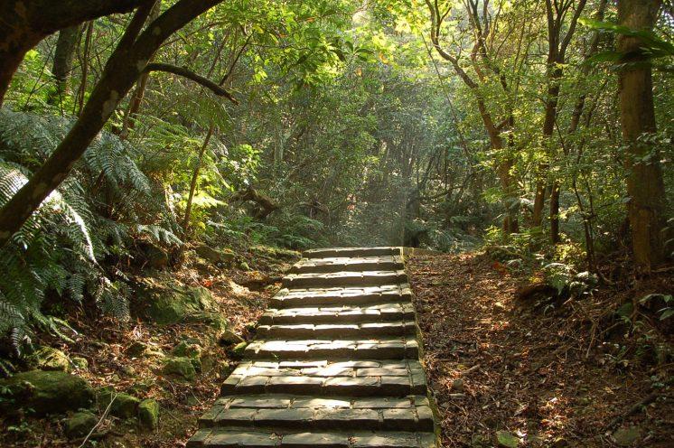 內雙溪自然中心_碧溪自然步道